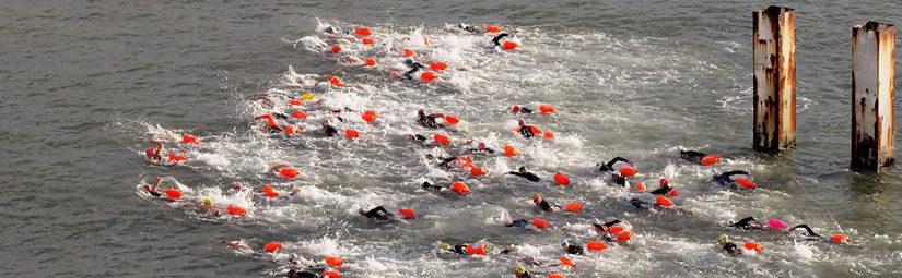Inschrijving zwemtochten geopend